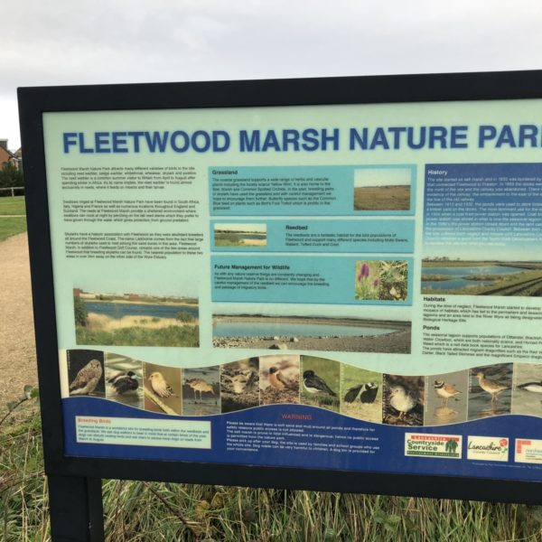 Dog walk at Fleetwood Nature Reserve Walk