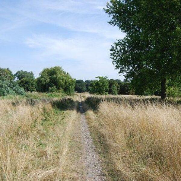 Foots Cray Meadows photo 4