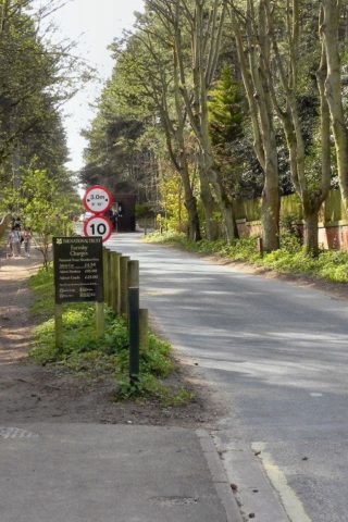 Dog walk at Formby Squirrel Reserve (leading To The Beach) photo