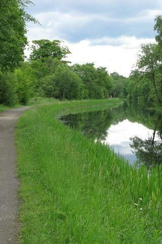 Dog walk at Forth And Clyde Canal photo