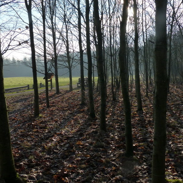 Fosse Meadows Country Park photo 2
