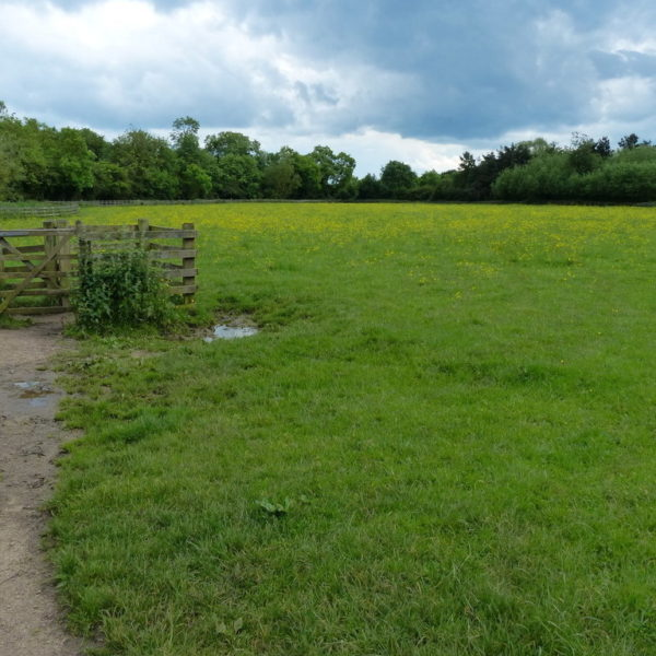 Fosse Meadows Country Park photo 1