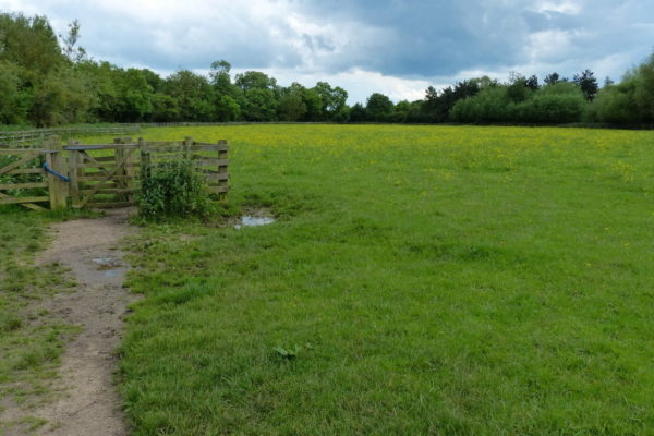 Fosse Meadows Country Parkphoto
