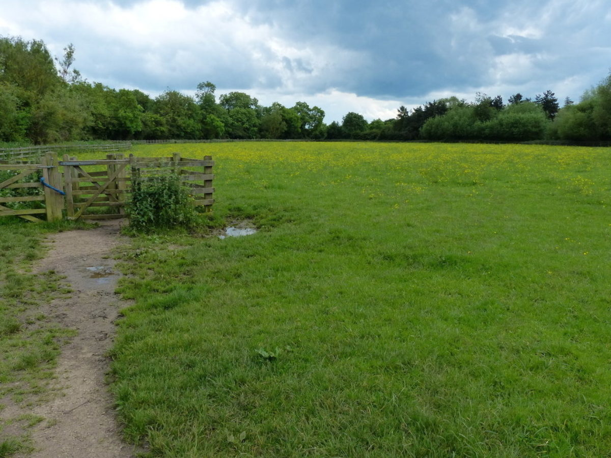 Fosse Meadows Country Park large photo 1