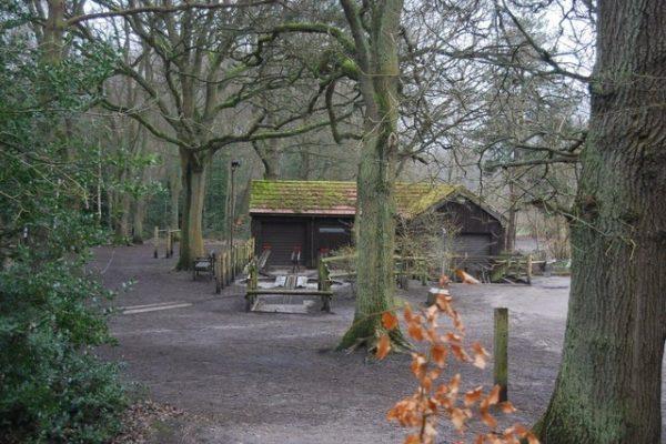 Frimley Lodge Parkphoto