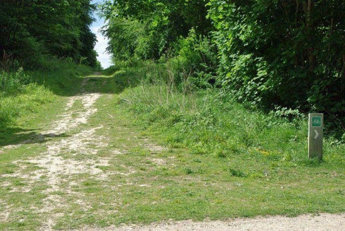 Friston Forest large photo 5
