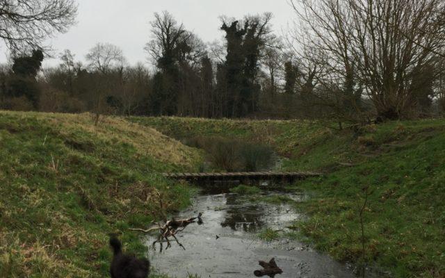 Fulbourn Country Walk Dog walk in Cambridgeshire