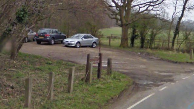Dog walk at Garnetts Wood