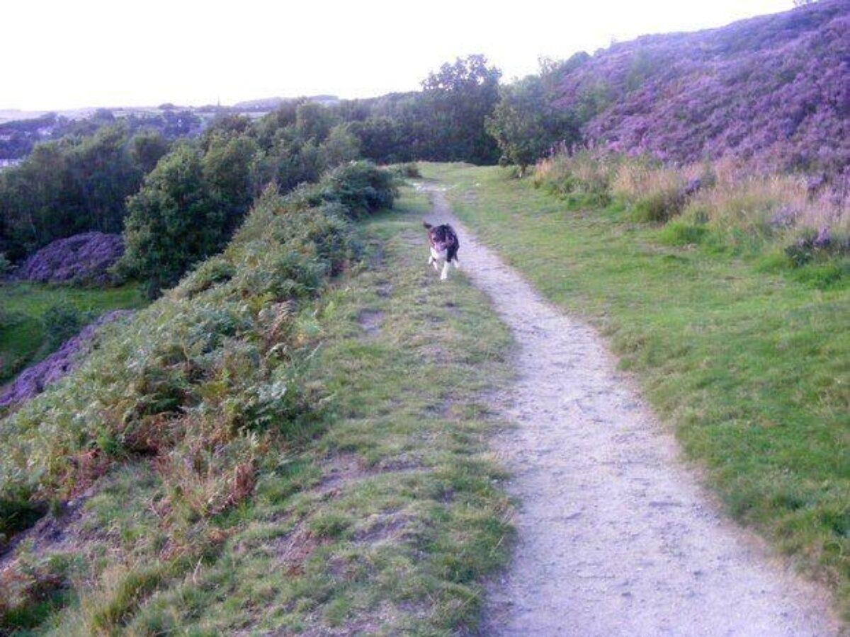 Gilstead Moor, Bingley large photo 2