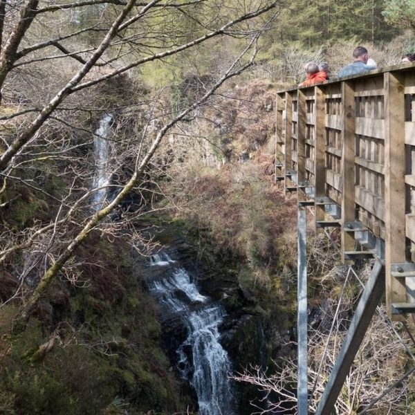 Dog walk at Glenashdale Falls