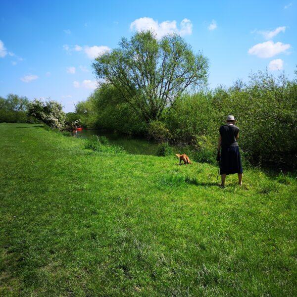 Grantchester Meadows photo 3