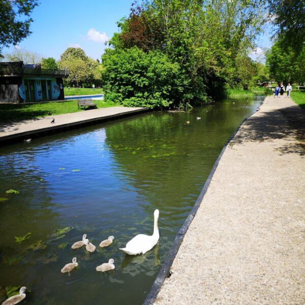 Grantchester Meadows photo 8