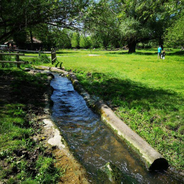 Grantchester Meadows photo 11