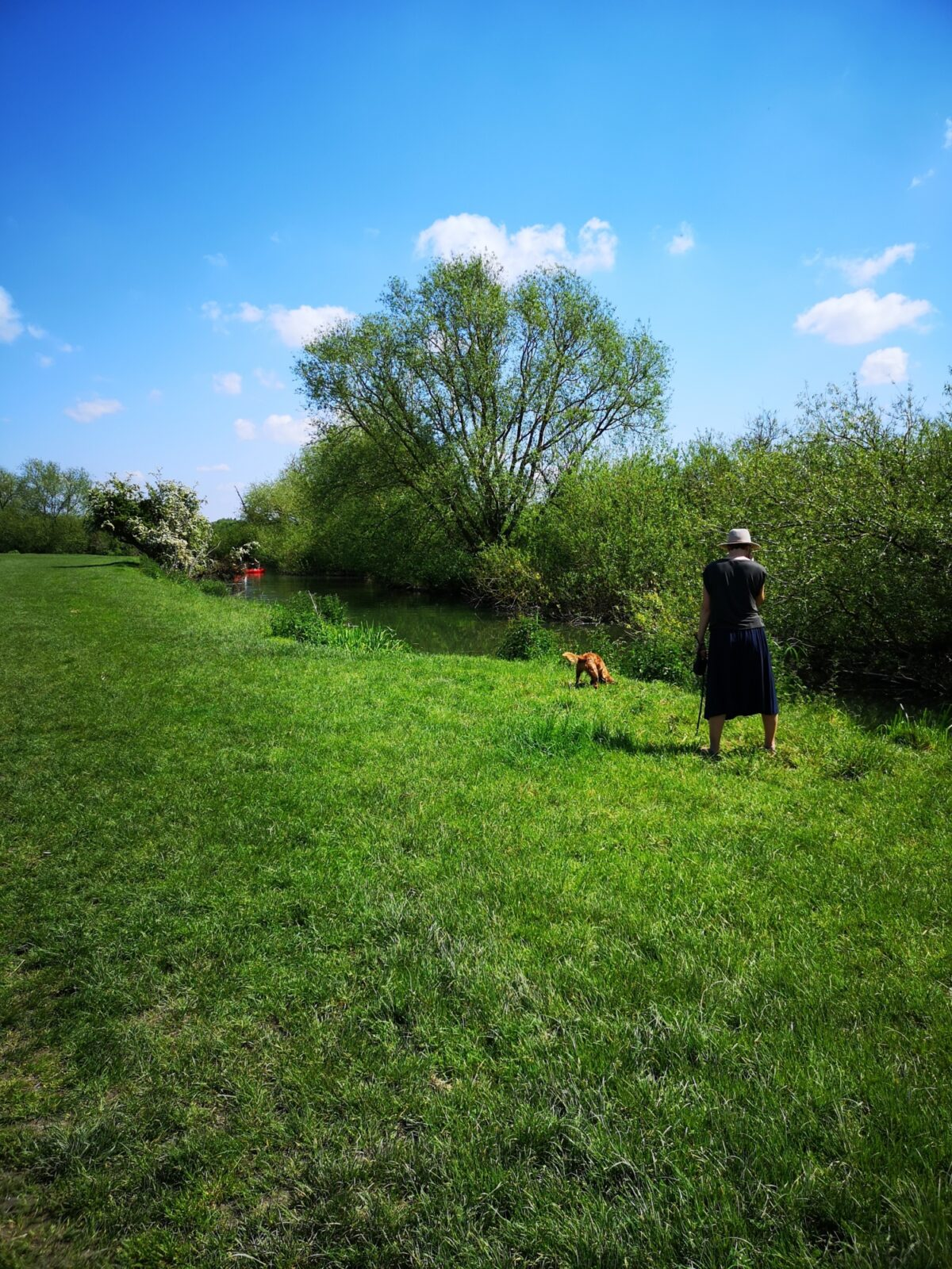Grantchester Meadows large photo 3