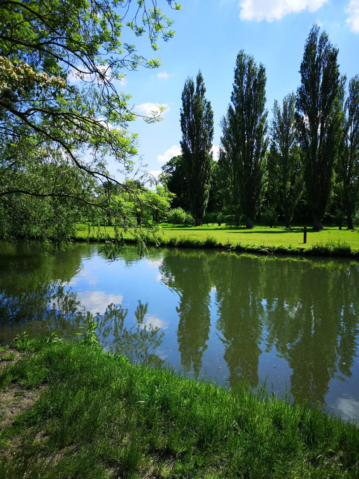 Grantchester Meadows large photo 6