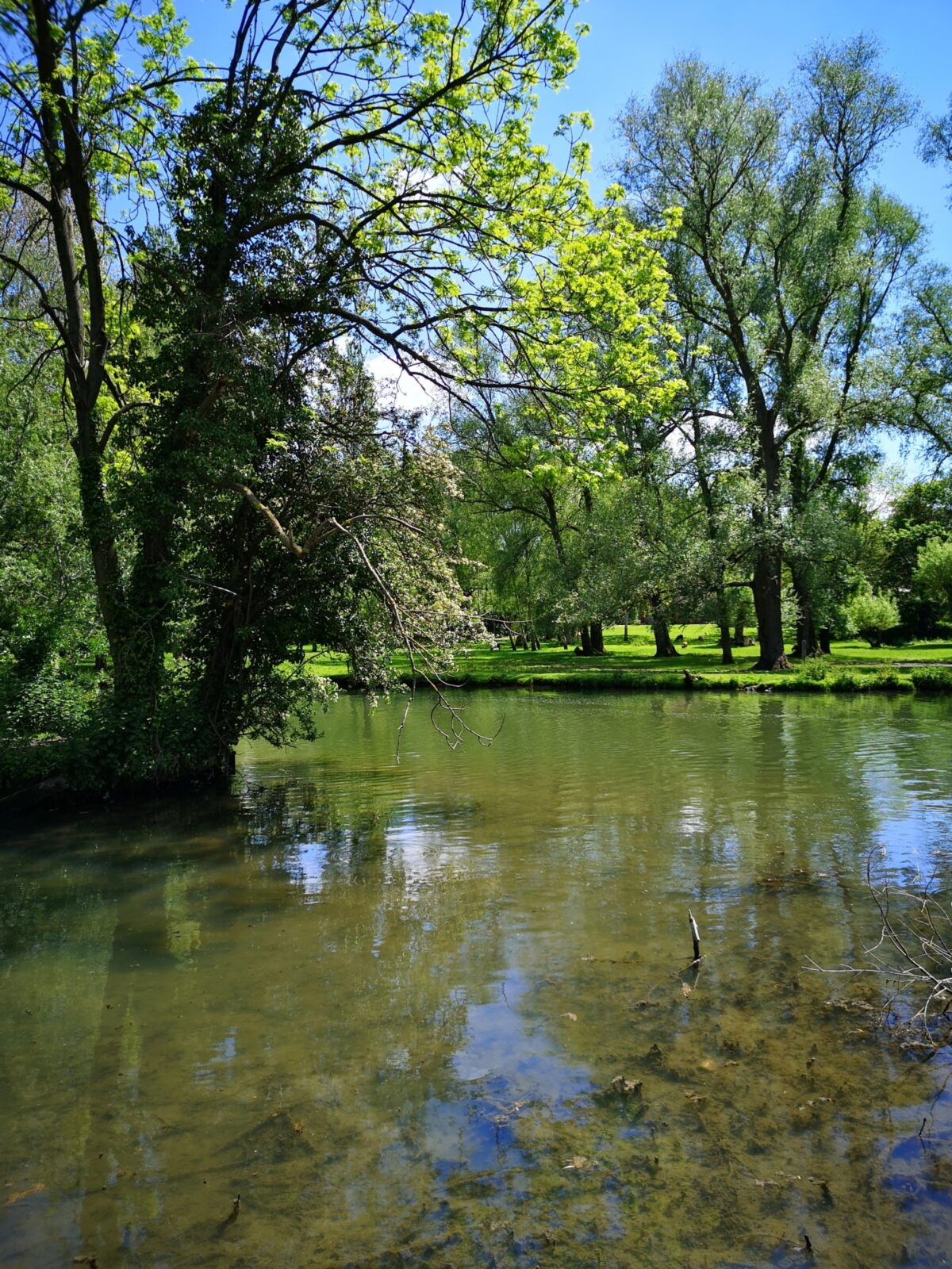 Grantchester Meadows large photo 7