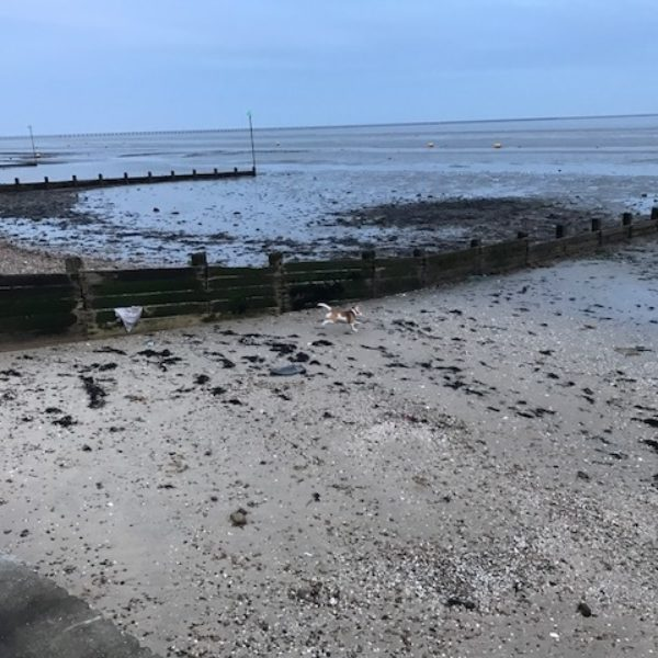 Dog walk at Gunners' Park to East Beach, Shoebury