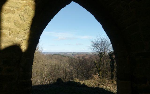 Hackfall Woods Dog walk in Yorkshire (North)