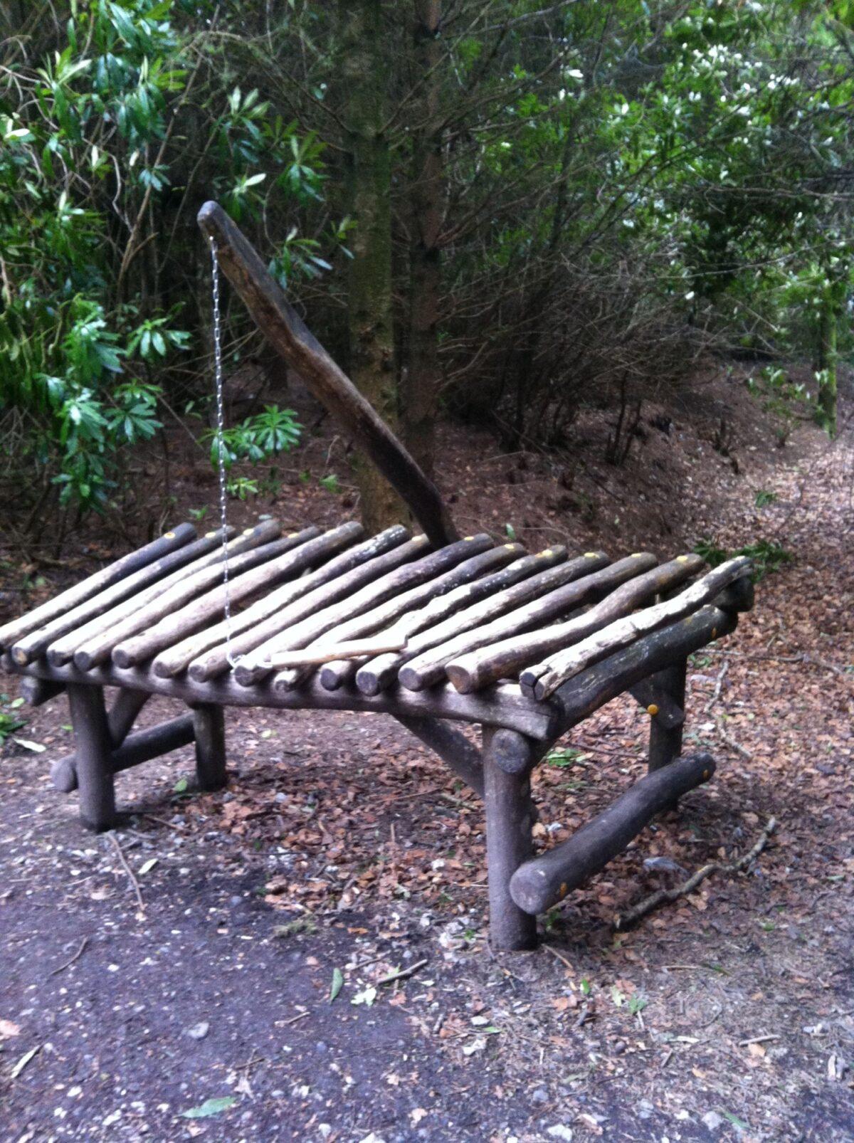 Haldon Forest Park large photo 4