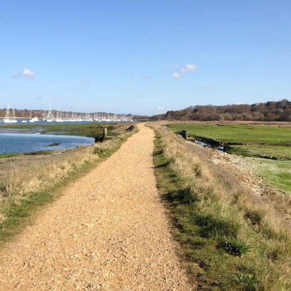 Hamble River (Warsash Side) photo 5