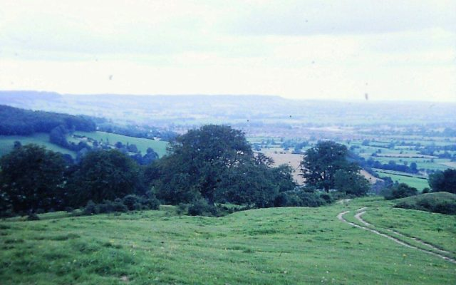 Haresfield Beacon Dog walk in Gloucestershire