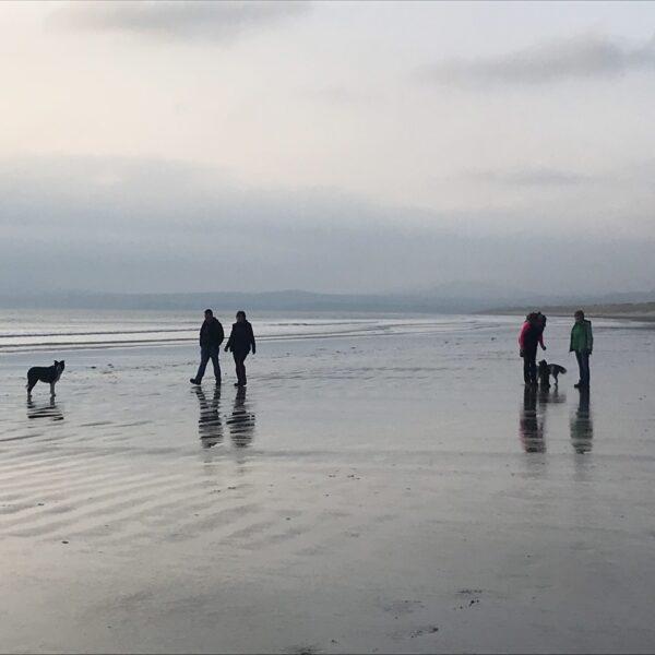 Dog walk at Harlech Beach