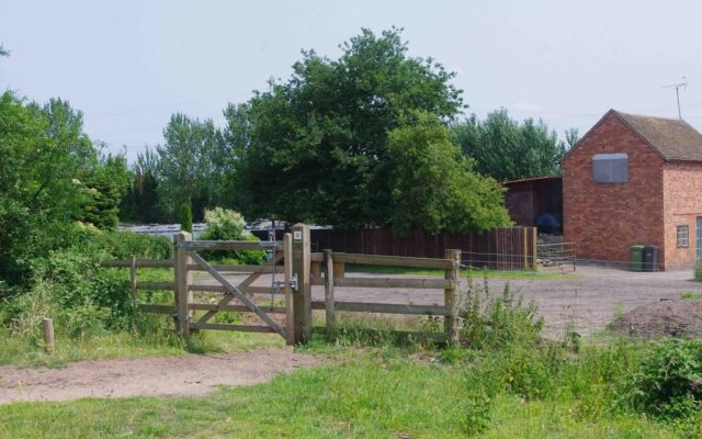 Hartlebury Common Dog walk in Worcestershire