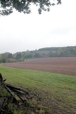 Dog walk at Haughmond Hill photo