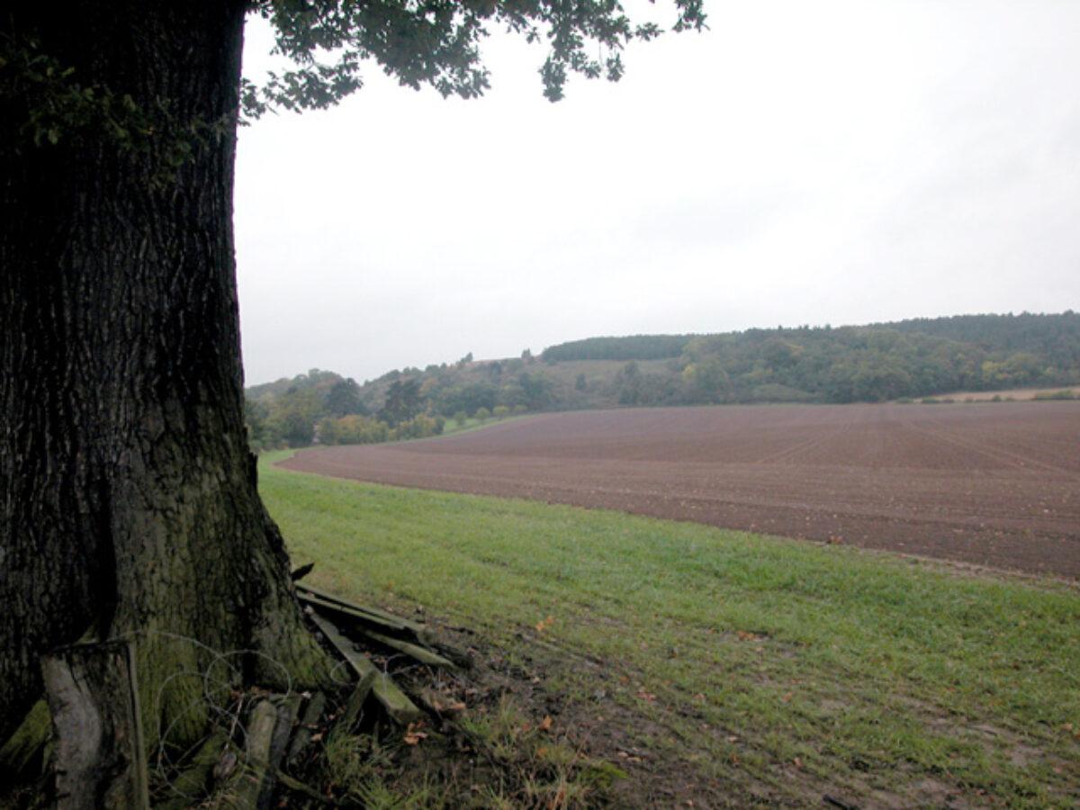Haughmond Hill large photo 1