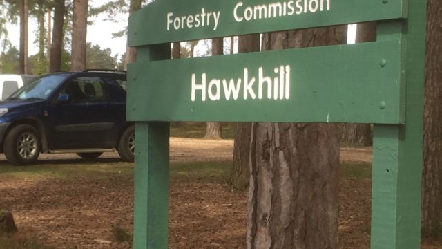 Dog walk at Hawkhill Enclosure