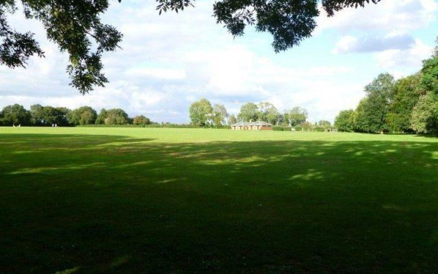 Hazelmere Recreation Grounds Dog walk in Buckinghamshire
