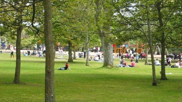 Dog walk at Hazlehead Park