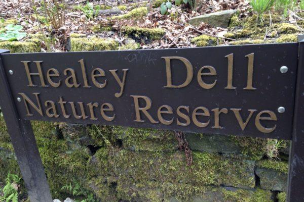 Healey Dell Nature Reservephoto