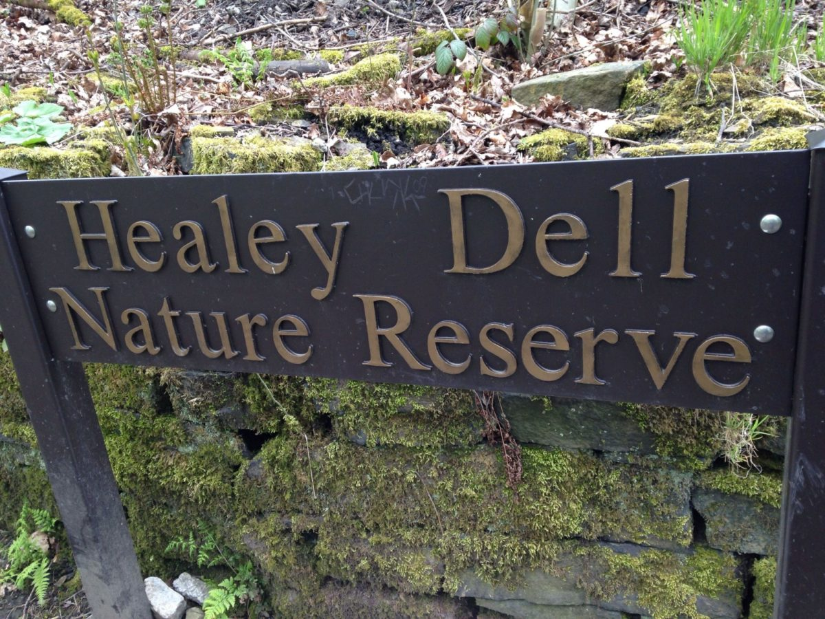 Healey Dell Nature Reserve large photo 1