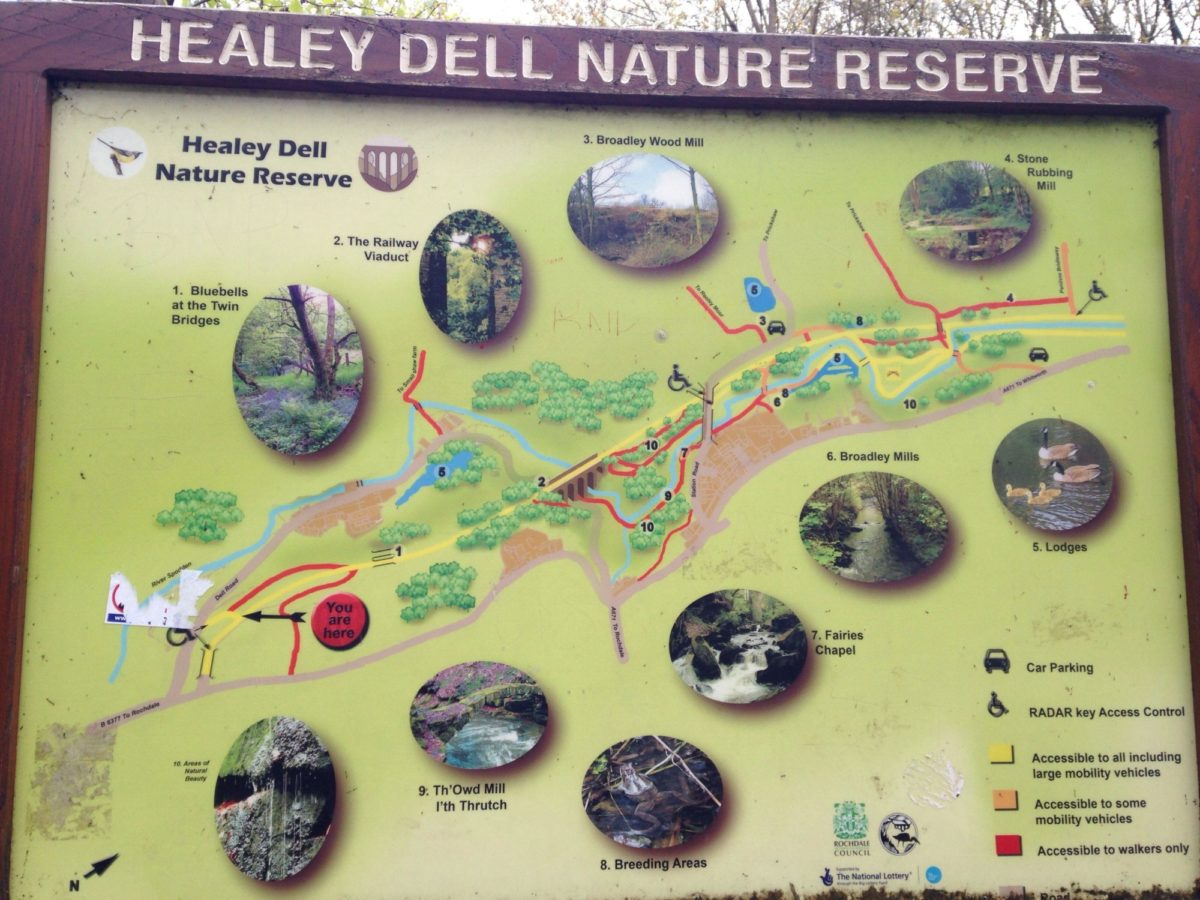 Healey Dell Nature Reserve large photo 2