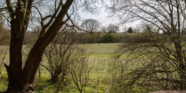 Ellenbrook Fields (The Old Hatfield Aerodrome)
