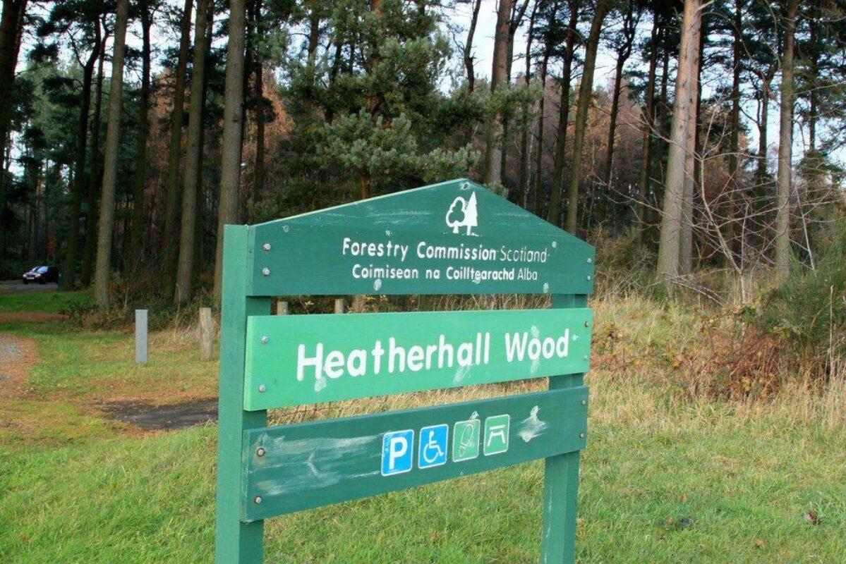 Heatherhall Woods, Ladybank large photo 2