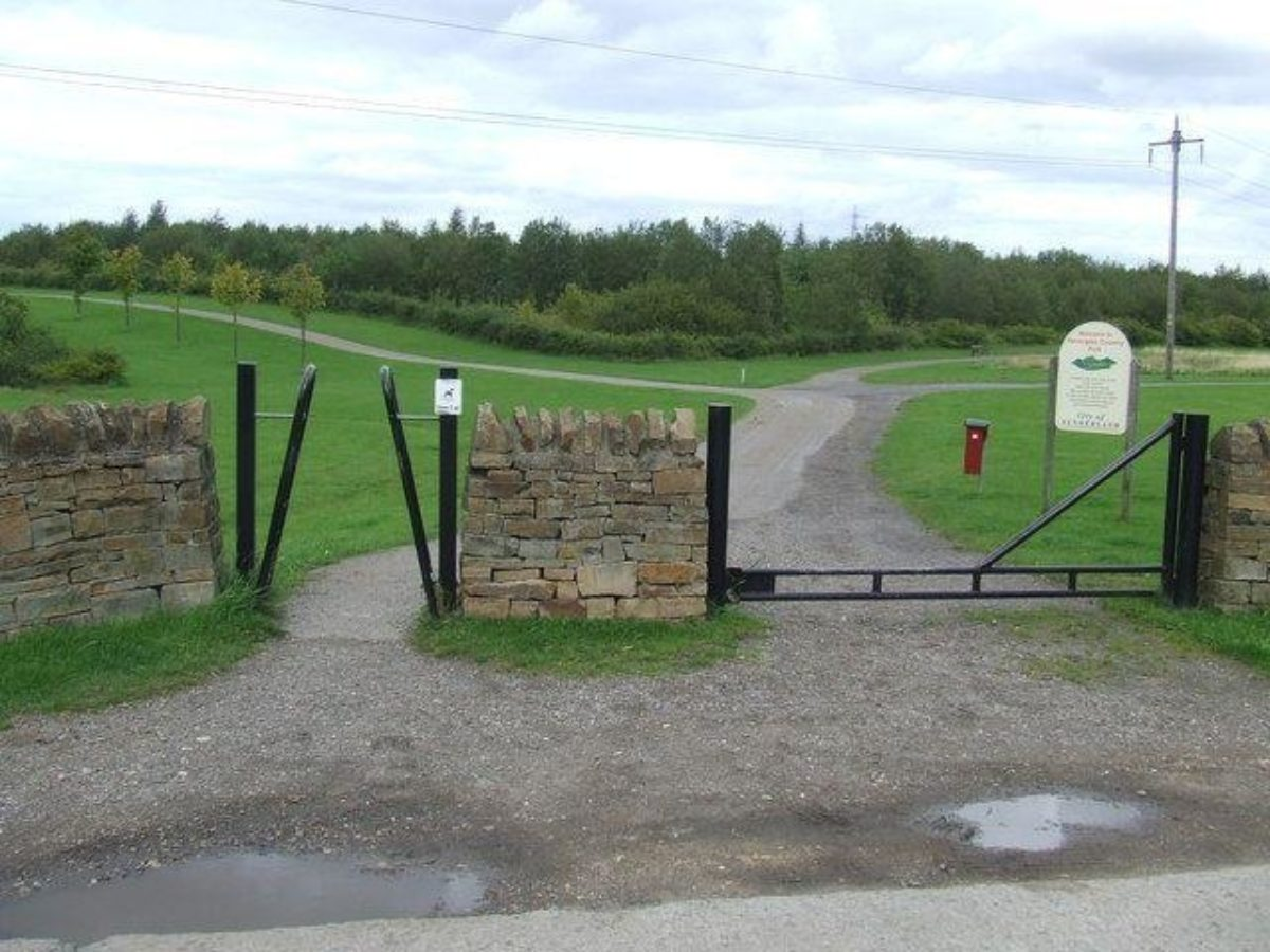 Herrington Country Park large photo 3
