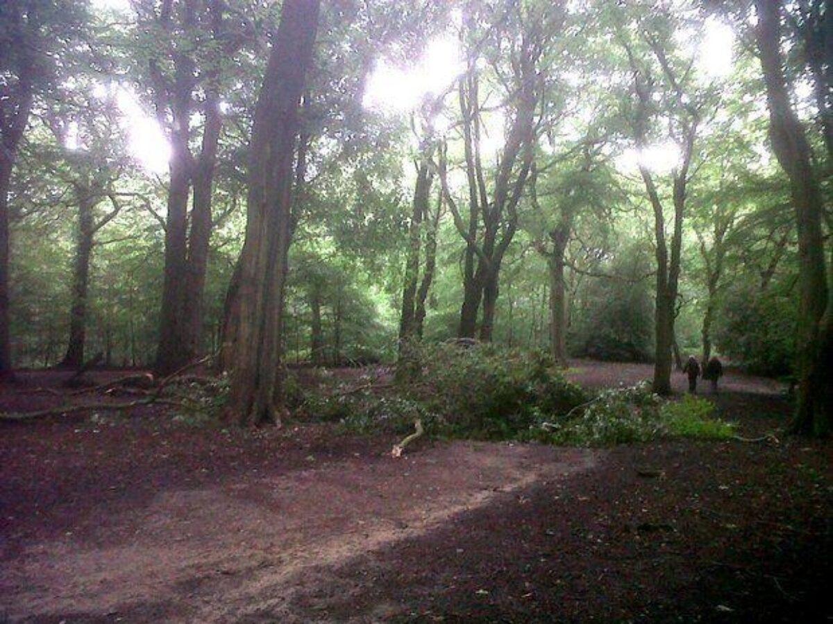 Hirst Wood, Bingley large photo 1