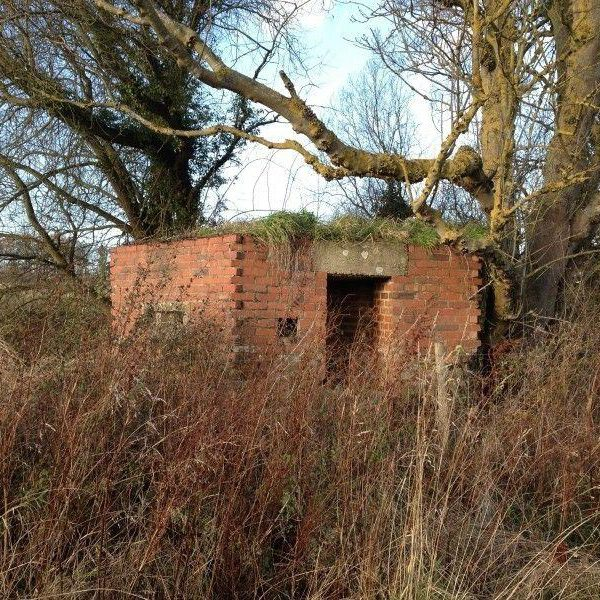 Hitches Lane Country Park photo 1