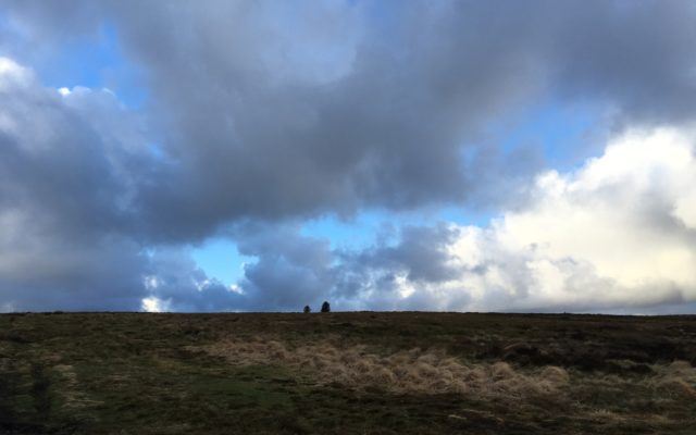 Holcombe Hill, Lancashire Dog walk in Lancashire