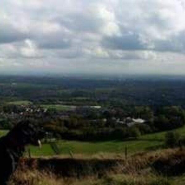 Dog walk at Holcombe Hill
