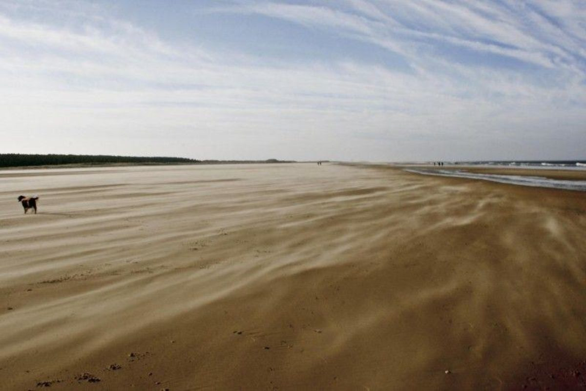 Holkham Beach, North Norfolk large photo 5