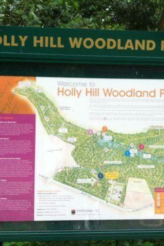 Dog walk at Holly Hill, Sarisbury Green photo