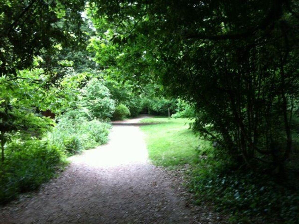 Holly Hill, Sarisbury Green large photo 5