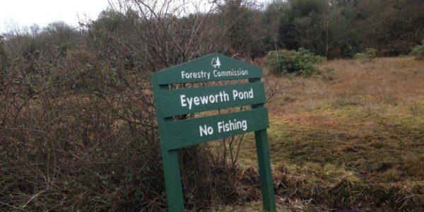 Howen Bottom & Eyeworth Pond