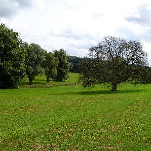 Hughenden Park And Manor photo 3