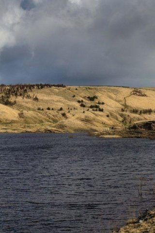 Dog walk at Hurstwood Reservoir photo