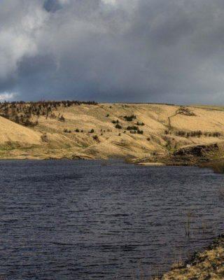 Dog walk at Hurstwood Reservoir
