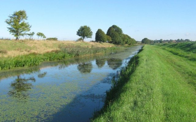 Hythe Canal Dog walk in Kent